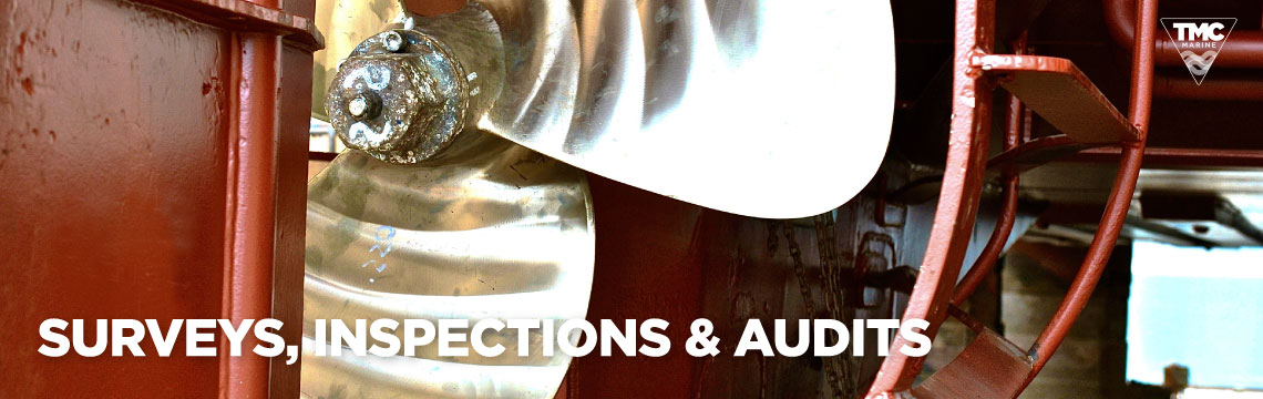 Surveys, Inspections & Audits